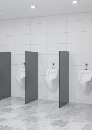 Urinal Screens and Privacy Partitions - floor mounted
